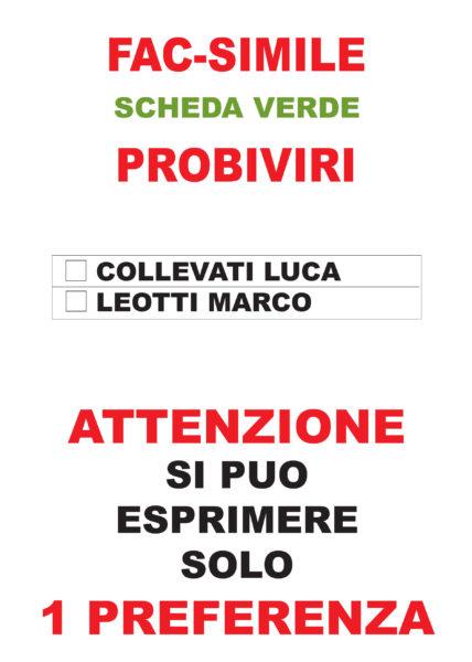fac-simile scheda verde elezioni 23.07.2016 Probiviri