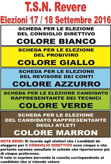 schede-elettorali